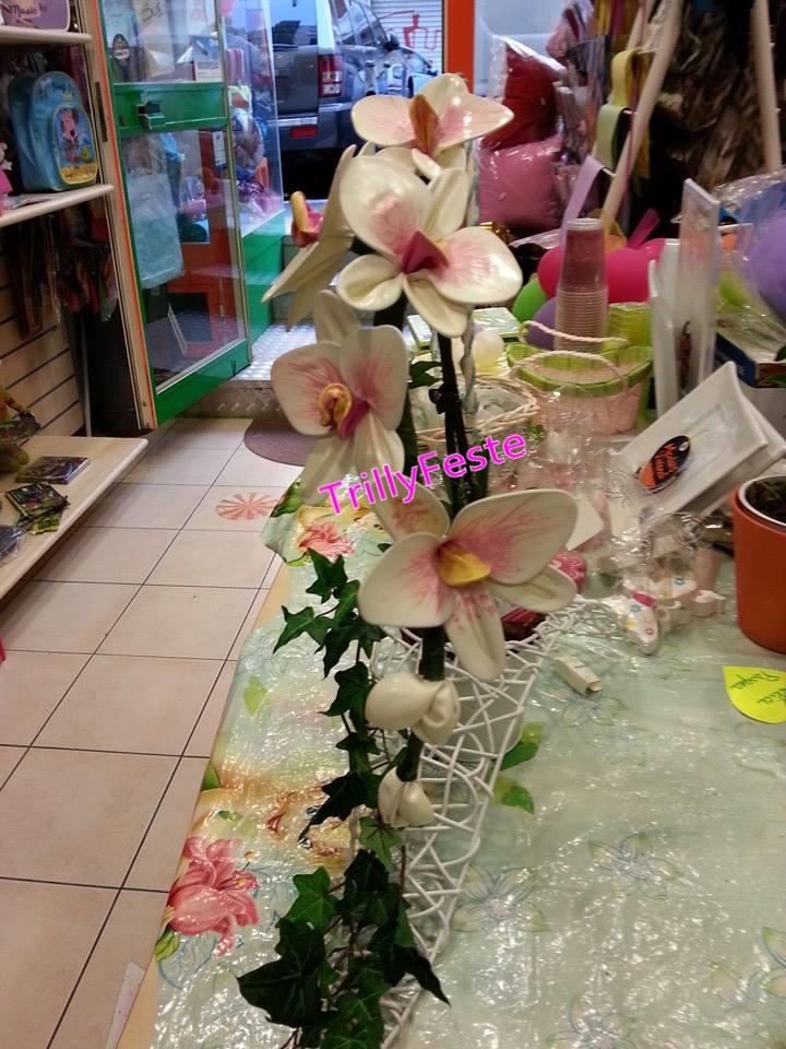 Orchidea in vaso addobbi per feste tuscolana roma for Vaso orchidea